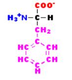 Fenilanina