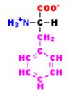 Fenil-alanina