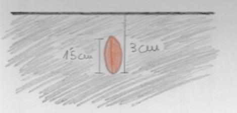 Dibujo de una semilla con las distancias adecuadas para su siembra