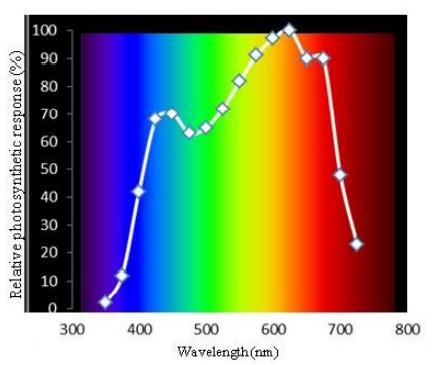 Gráfica de respuesta relativa fotosintética en porcentaje.