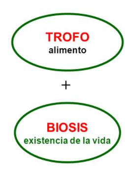 Significado de los componentes de la palabra: Trofobiosis