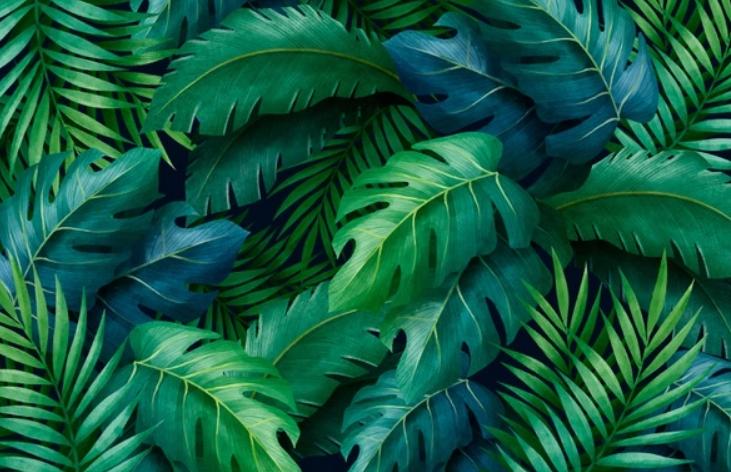 Fertilización foliar: principios básicos